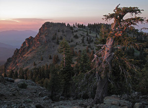 North Yolla Bolly Peak at the southern tip of the Klamath Mountains. Courtesy of Michael E. Kauffmann.