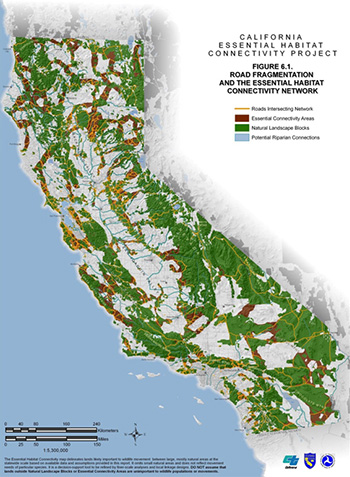 California Essential Habitat Connectivity Project.