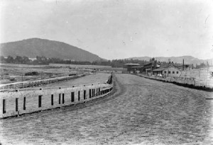 Bay District Racing Track quarter stretch. Mt. Sutro in the distance (1890s).