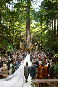 Sean Parker's wedding (2014).